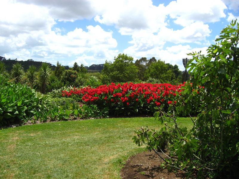 Auckland Botanic Gardens Manukau North Island New Zealand 010