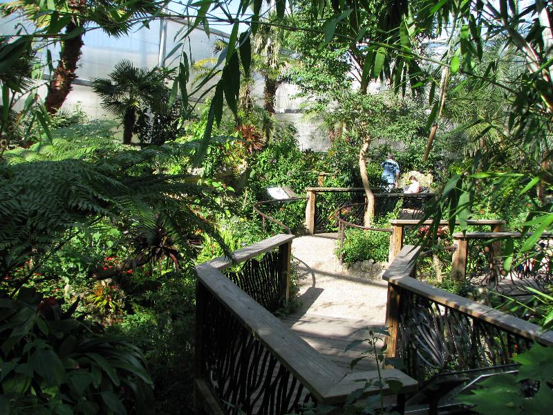 Butterfly Rainforest Flmnh Uf Gainesville Fl 055