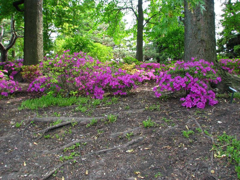 Chicago Botanic Garden Glencoe Il 0029