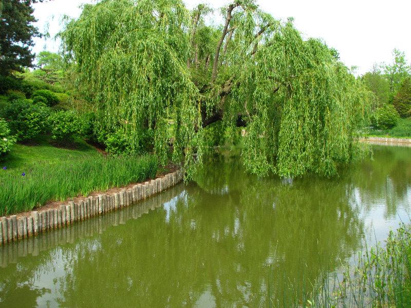 Chicago Botanic Garden Autos Post