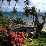 Coconut Grove Resort - Taveuni, Fiji