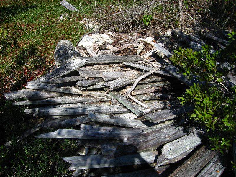 Dagny Johnson Key Largo Hammock Botanical State Park 020