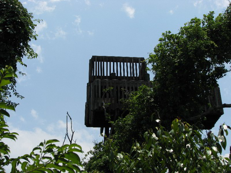 Nature Center Boca Raton Fl