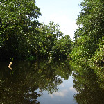 Hillsborough River State Park - Thonotosassa, FL