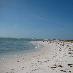 Honeymoon Island State Park - Dunedin, FL