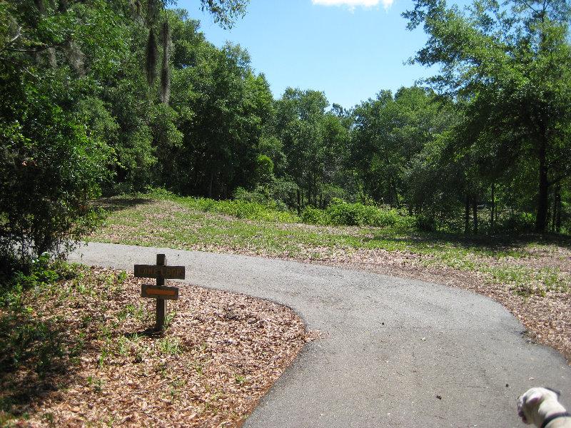 Jacksonville Arboretum And Gardens Jacksonville Fl 007