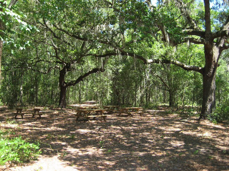 Jacksonville fl pictures posters news and videos on - Jacksonville arboretum and gardens ...