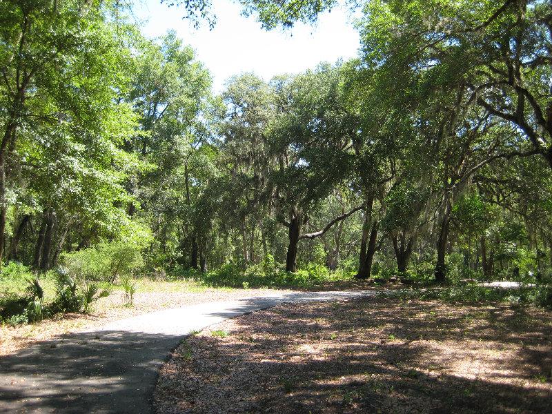 Jacksonville Arboretum And Gardens Jacksonville Fl 009