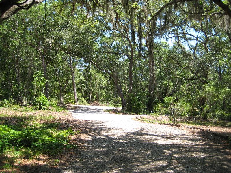 Jacksonville Arboretum And Gardens Jacksonville Fl 012