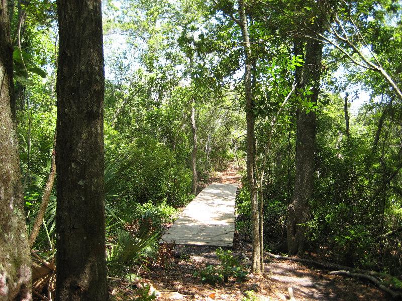 Jacksonville Arboretum And Gardens Jacksonville Fl 020