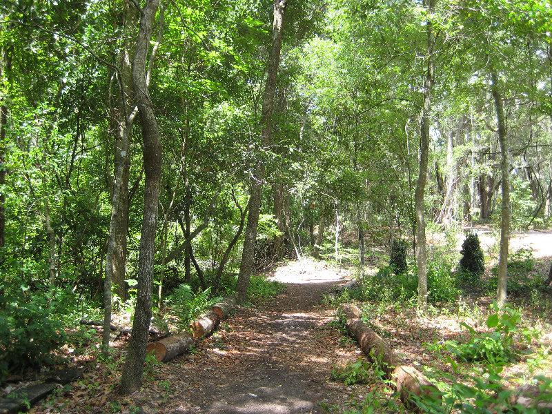 Jacksonville arboretum and gardens jacksonville fl 033 - Jacksonville arboretum and gardens ...