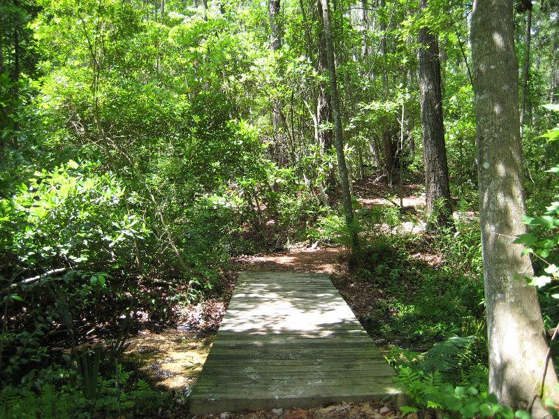 Jacksonville Arboretum And Gardens Jacksonville Fl 034