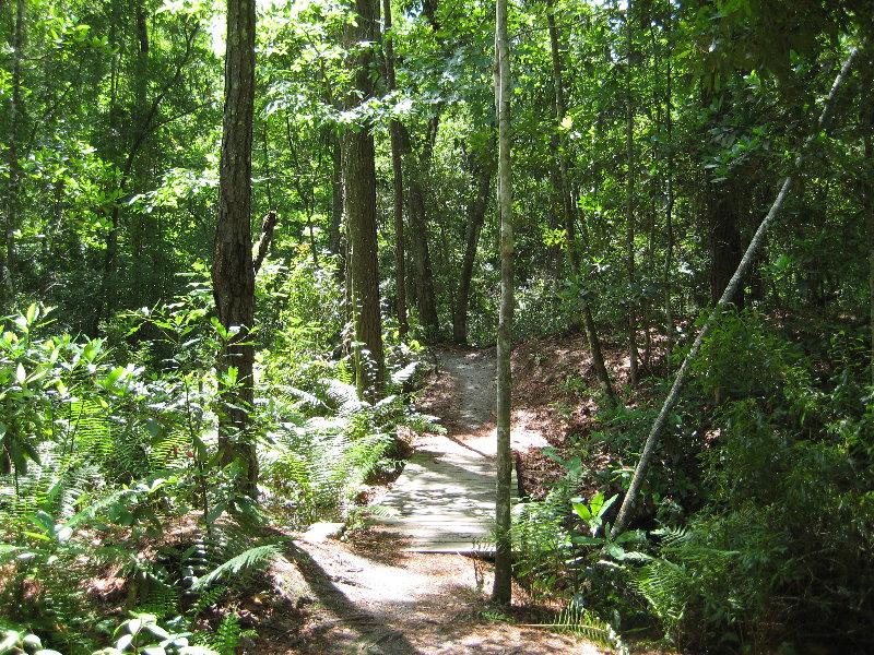 Jacksonville arboretum and gardens jacksonville fl 040 - Jacksonville arboretum and gardens ...