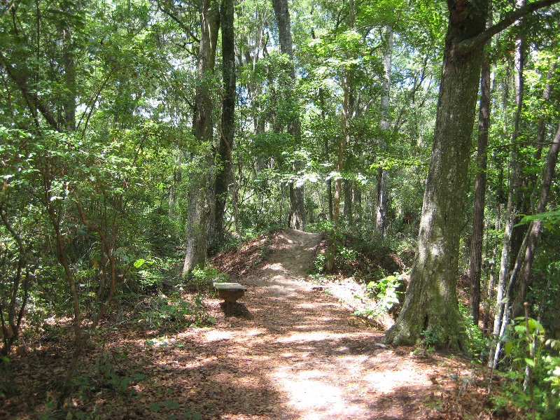 Jacksonville Arboretum And Gardens Jacksonville Fl 043