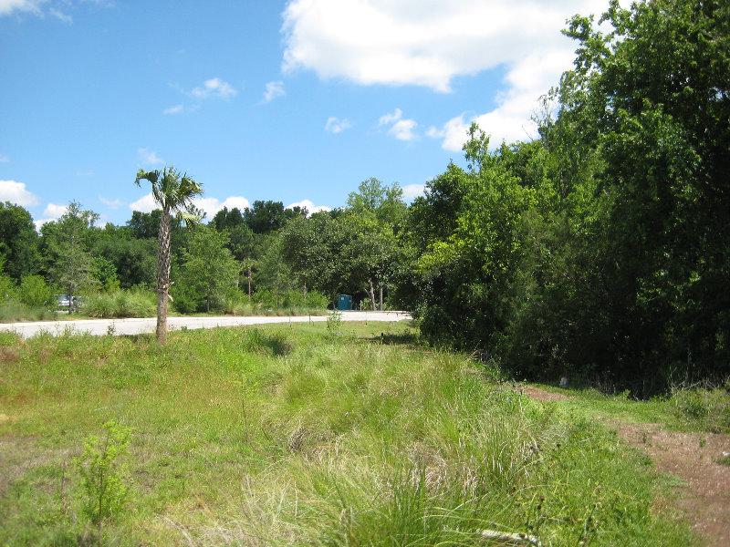 Jacksonville Arboretum And Gardens Jacksonville Fl 045