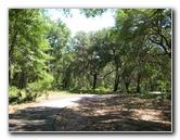 Jacksonville Arboretum Gardens Pictures Visitor