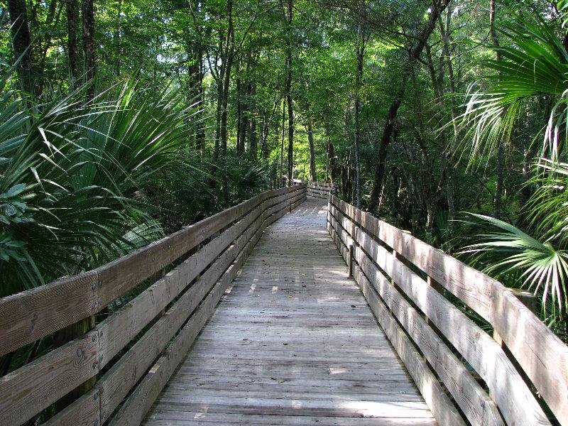 Florida wilderness survival guide