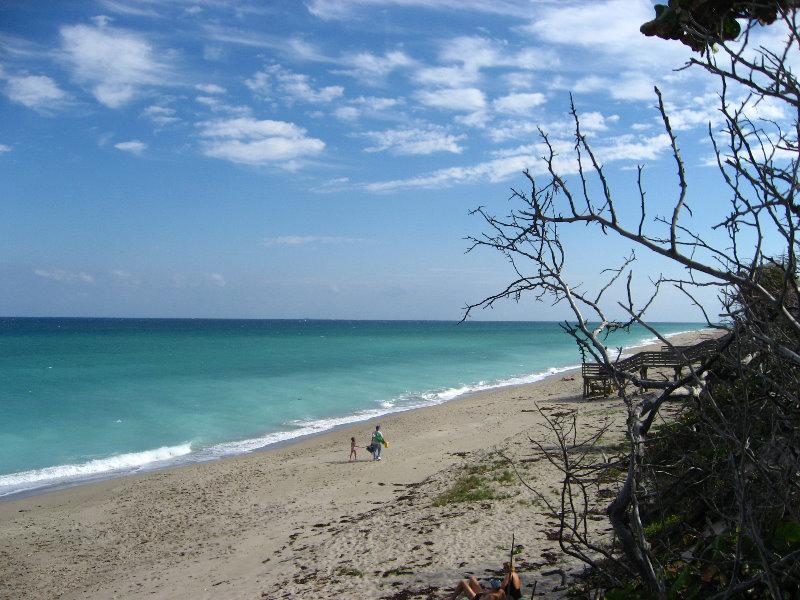 John D Macarthur State Park North Palm Beach