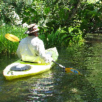 Juniper Springs Canoe Run - Ocala National Forest