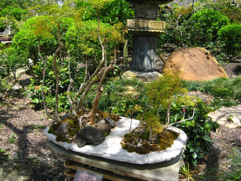 Images Of Japanese Gardens Delray Beach