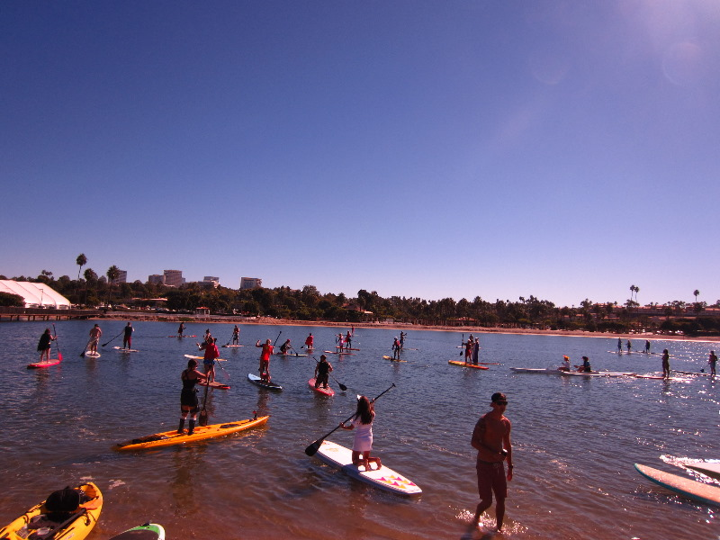 Stand Up Paddle Board Camp Newport Beach