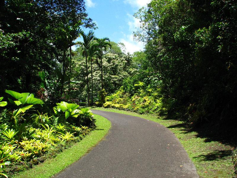 Rainforest On The Big Island: Panaewa-Rainforest-Zoo-and-Gardens-Hilo-Big-Island-Hawaii-008