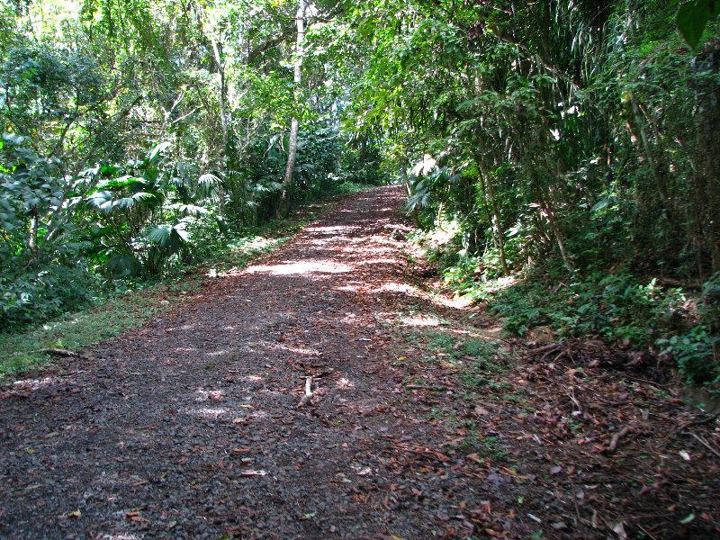 Metropolitan Natural Park Panama