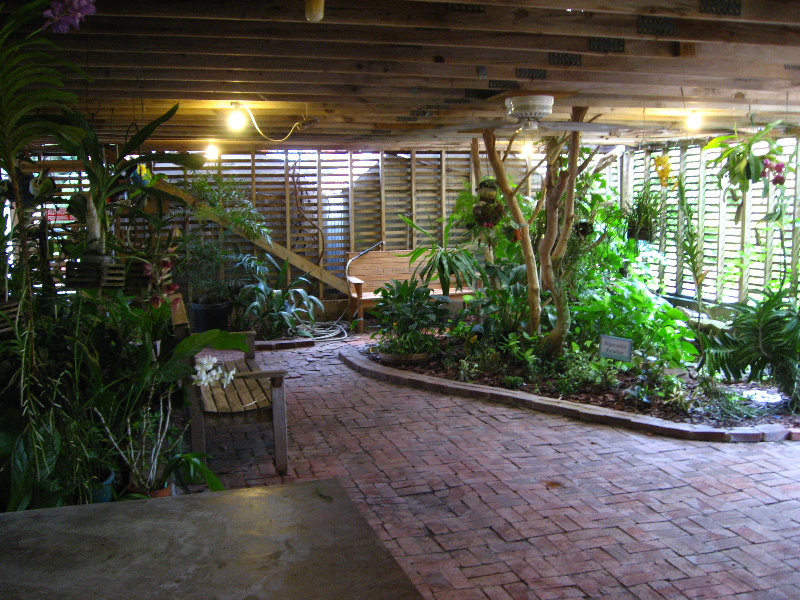 usf botanical gardens tampa fl 003