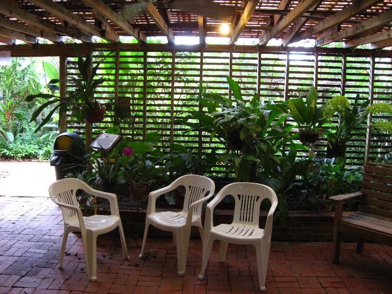 Usf Botanical Gardens Tampa Fl 004