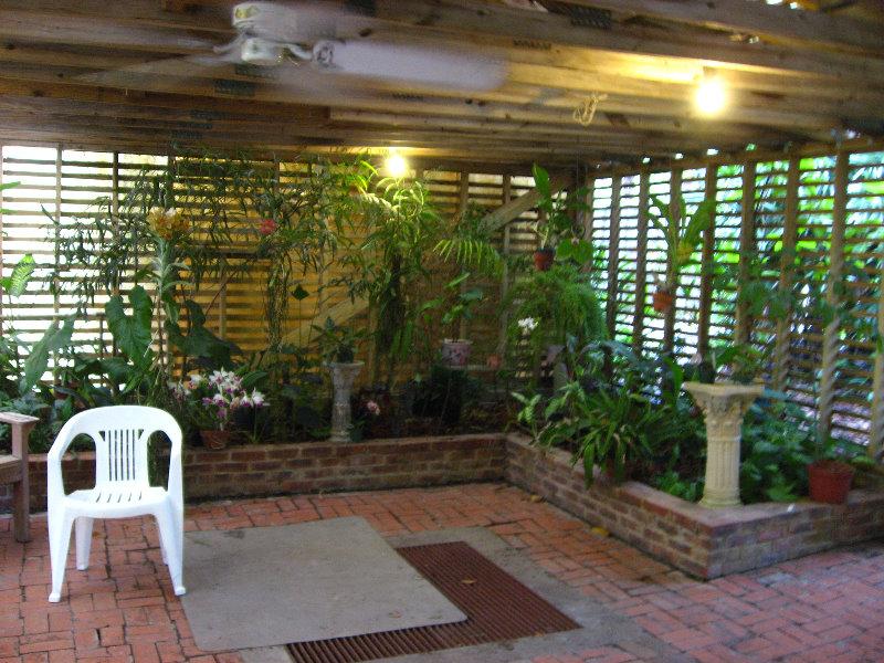 Usf Botanical Gardens Tampa Fl 010