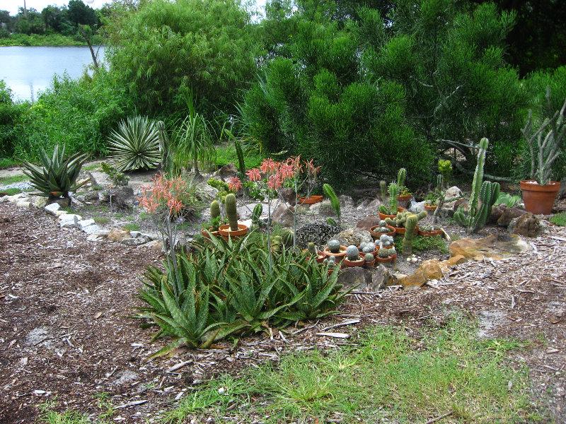Usf Botanical Gardens Tampa Fl 031