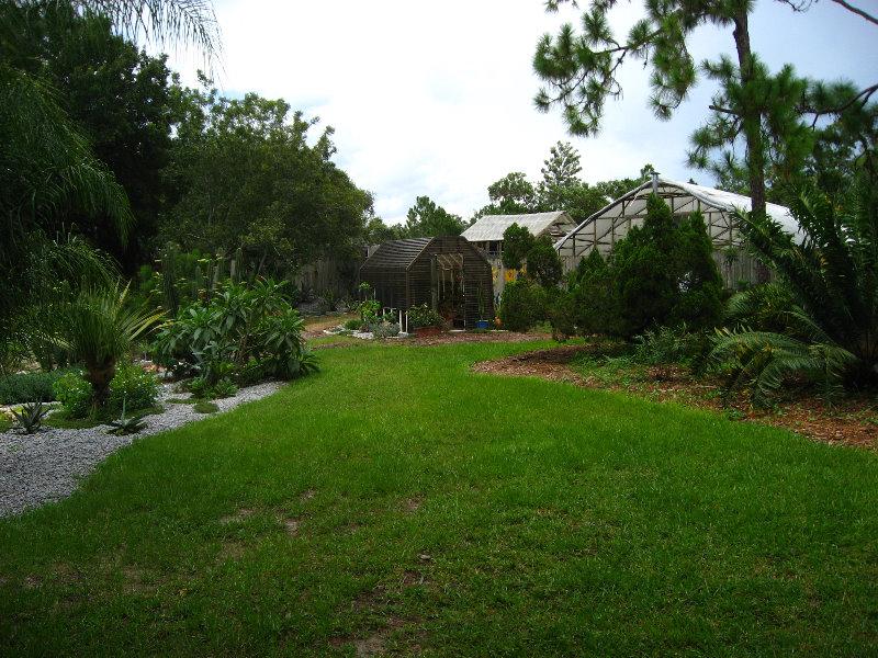 Usf Botanical Gardens Tampa Fl 045
