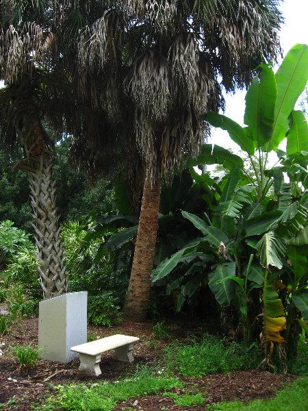 USF Botanical Gardens Tampa FL 054