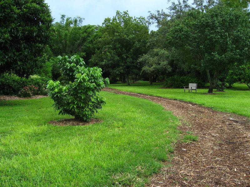 Usf Botanical Gardens Tampa Fl 062