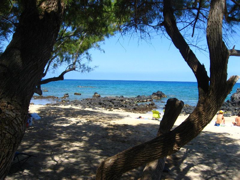 Waialea-Bay-Beach-69-Snorkeling-Kamuela-Big-Island-Hawaii-006