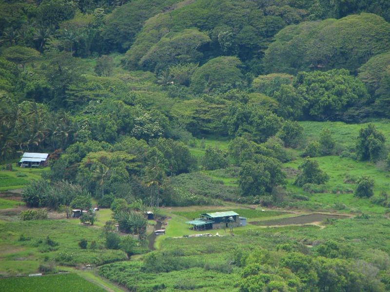 Waipio Valley On The Big Island Hawaii